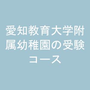 愛知教育大学附属幼稚園の受験コース