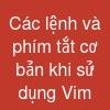 Các lệnh và phím tắt cơ bản khi sử dụng Vim
