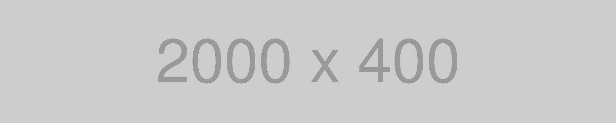 1000画像