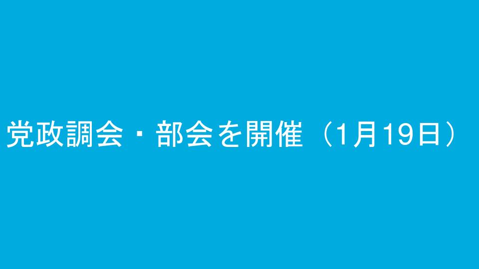 党政調会・部会を開催(1月19日)