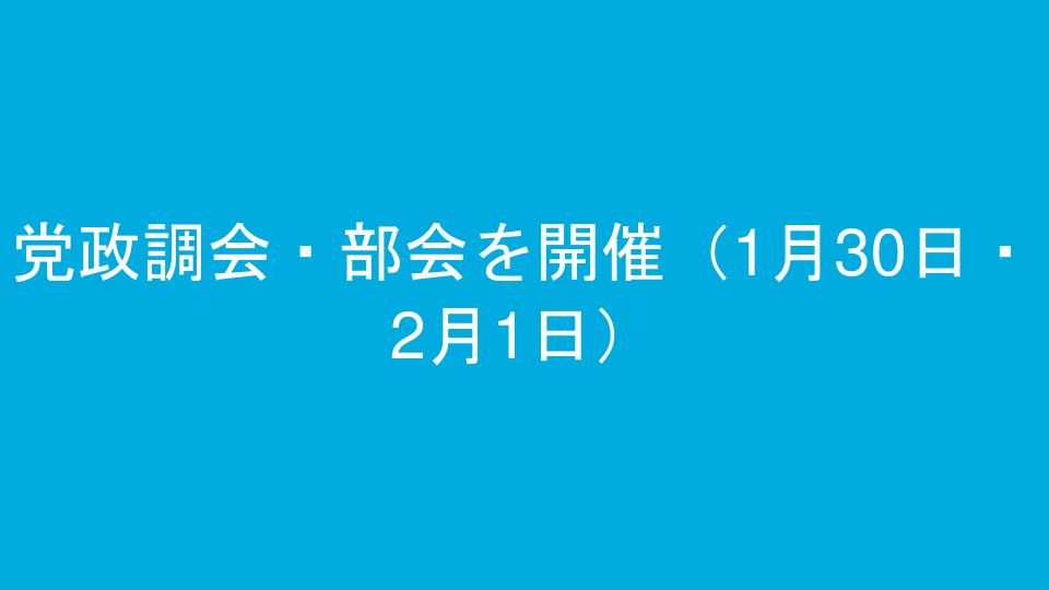 党政調会・部会を開催(1月30日・2月1日)