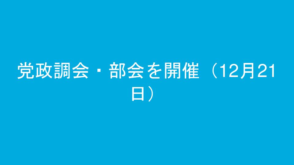 党政調会・部会を開催(12月21日)