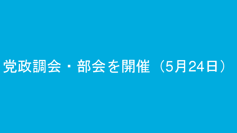 党政調会・部会を開催(5月24日)