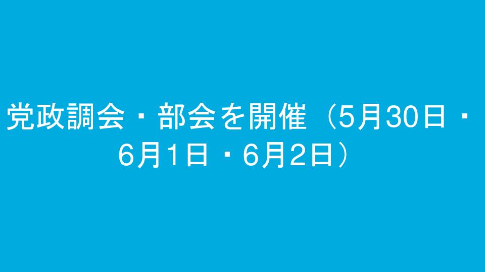 党政調会・部会を開催(5月30日・6月1日・6月2日)