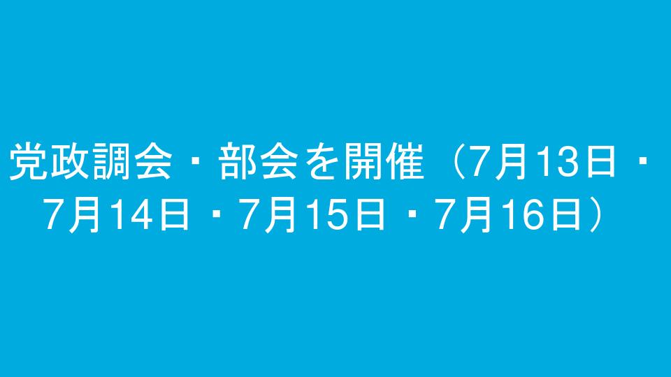 党政調会・部会を開催(7月13日・7月14日・7月15日・7月16日)