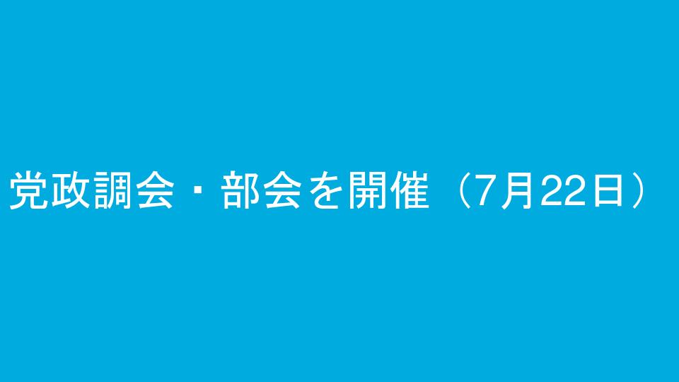 党政調会・部会を開催(7月22日)