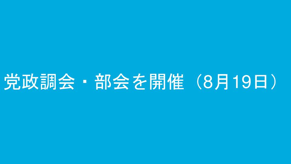 党政調会・部会を開催(8月19日)