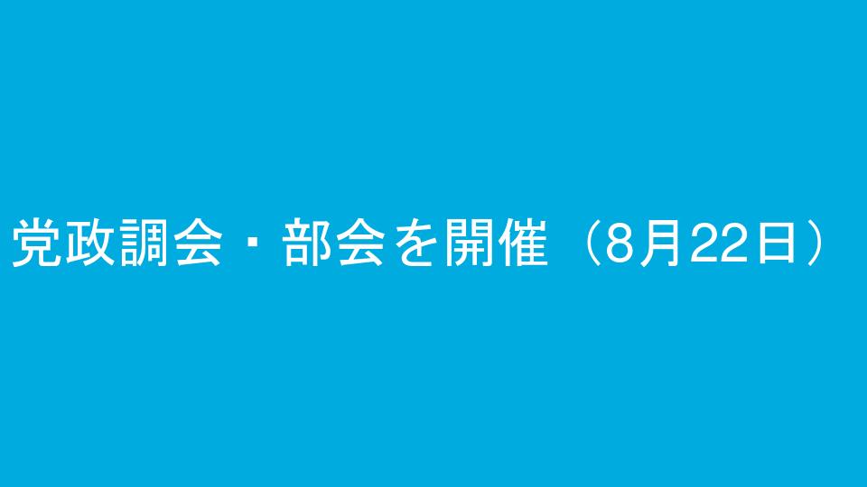 党政調会・部会を開催(8月22日)