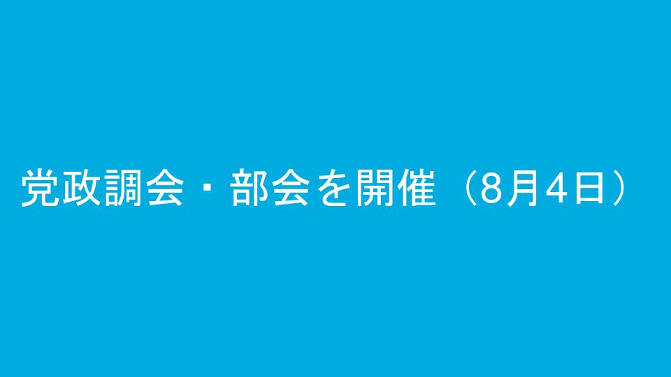 党政調会・部会を開催(8月4日)
