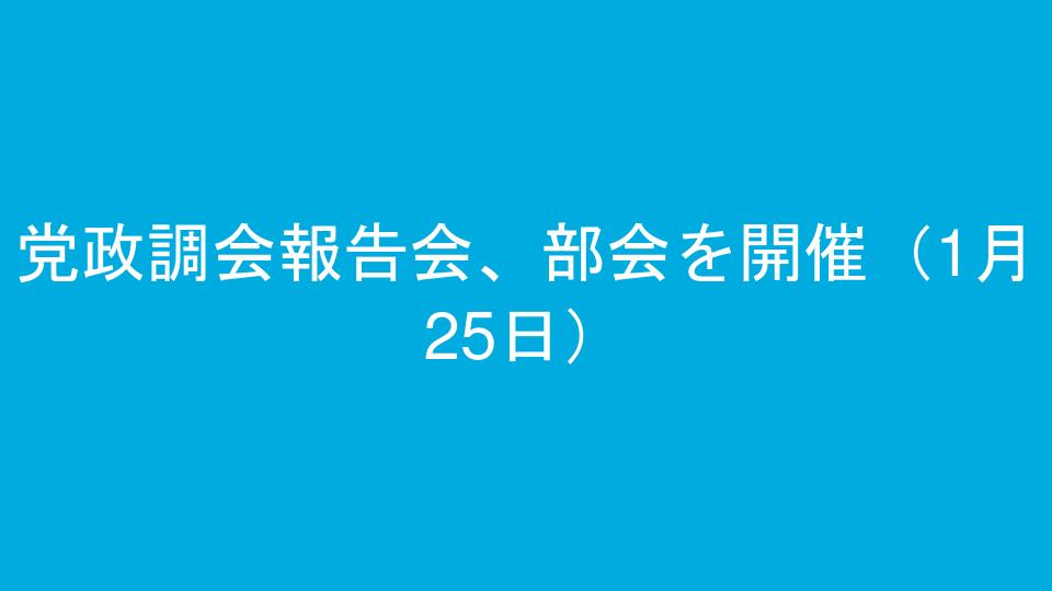 党政調会報告会、部会を開催(1月25日)