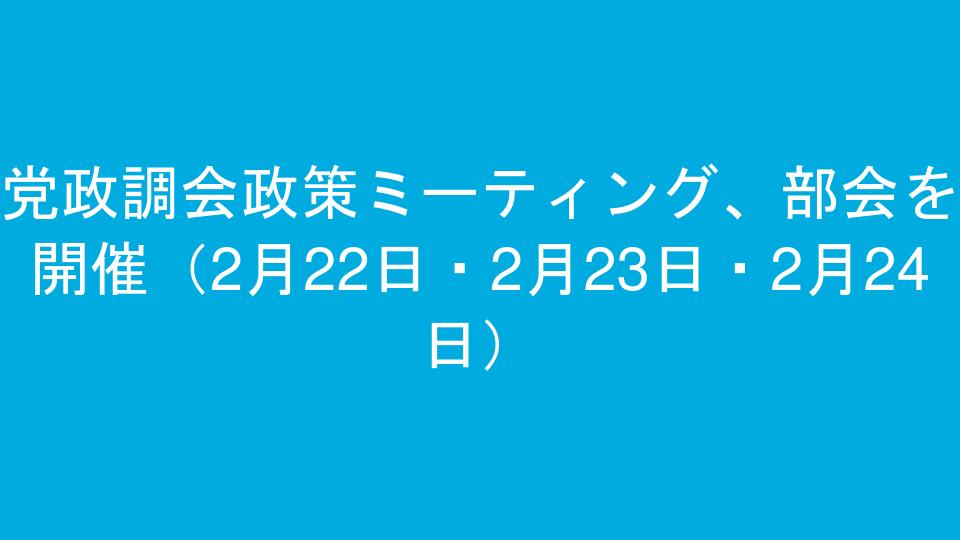 党政調会政策ミーティング、部会を開催(2月22日・2月23日・2月24日)