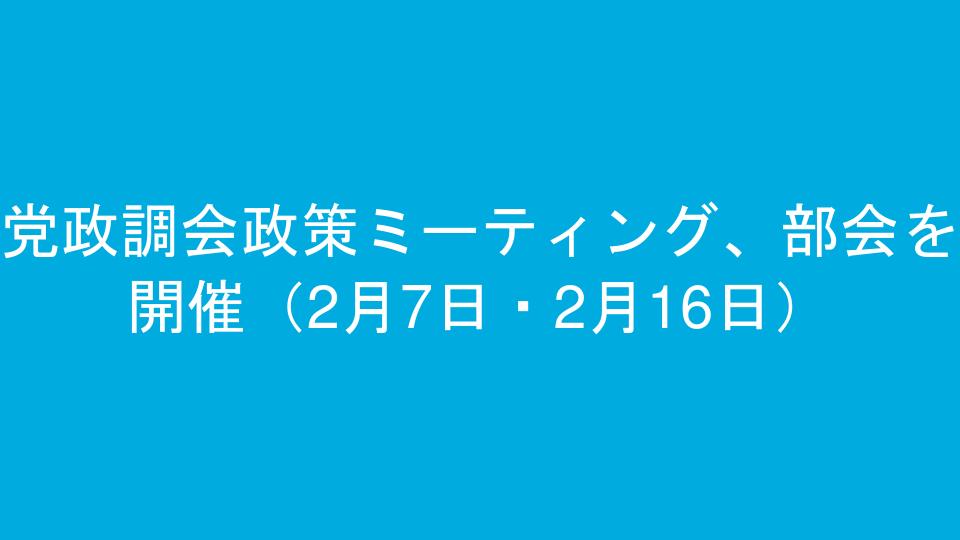 党政調会政策ミーティング、部会を開催(2月7日・2月16日)