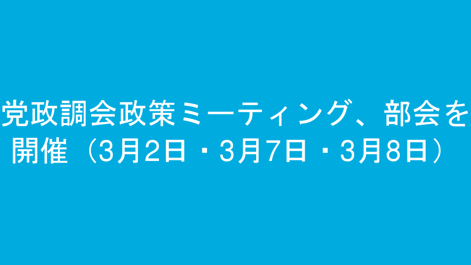 党政調会政策ミーティング、部会を開催(3月2日・3月7日・3月8日)