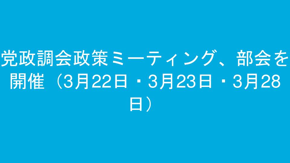 党政調会政策ミーティング、部会を開催(3月22日・3月23日・3月28日)